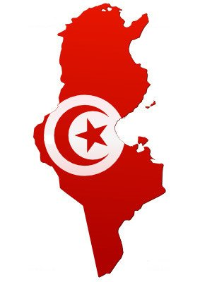 Emino tunisie - La reponse (2014)