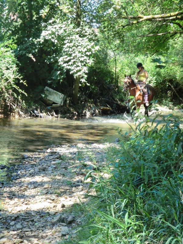 ¤Un petit tour dans la riviere :D¤