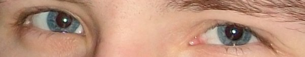 Mes Yeux !!