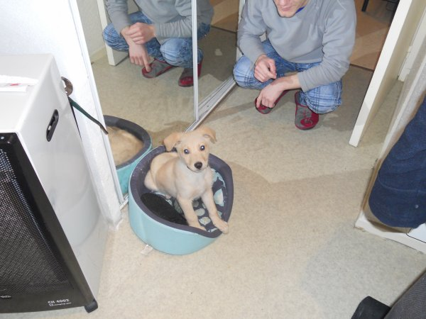 bobby quand il été petit trop mimi!!