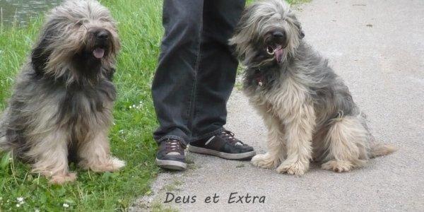 Deus et Extra petite balade au canal