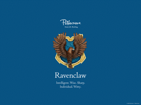 Hell yeah ❤ #Ravenclaw #HarryPotter