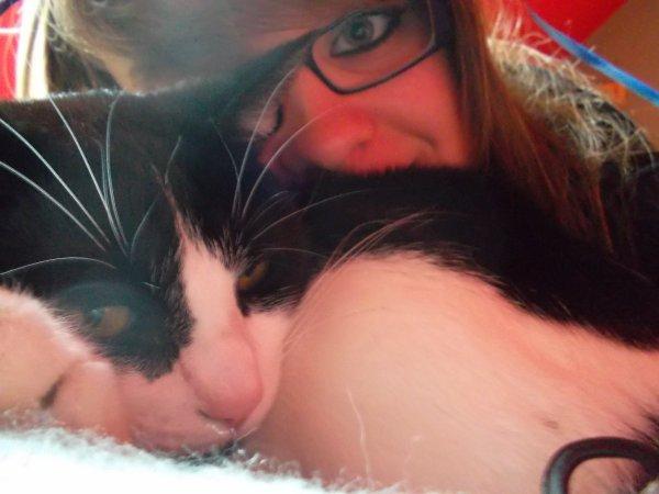 Domino, mon gros matou. ♥