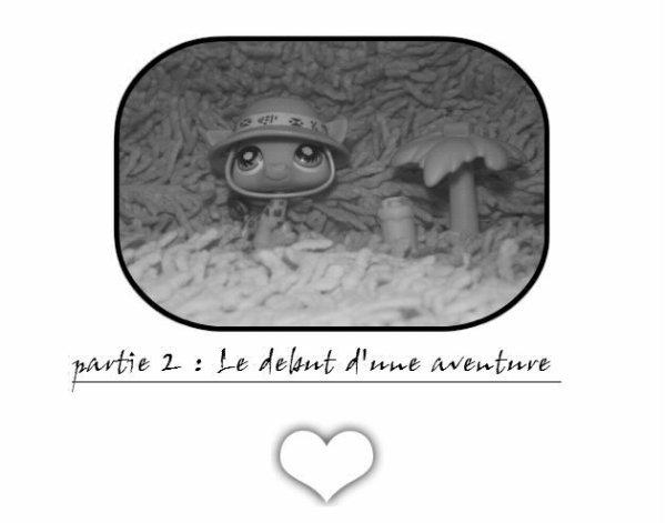 partie 2 : le début d'une aventure