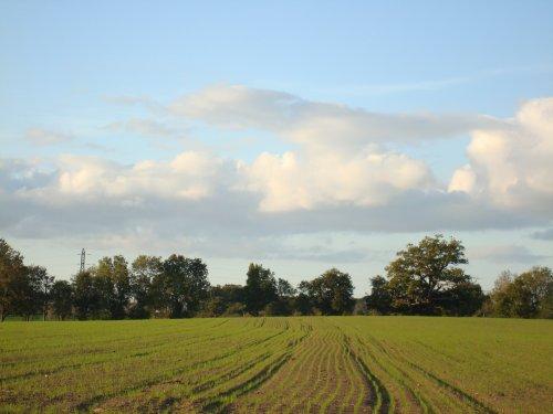quelques photos de paysage !