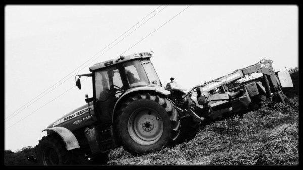 fauchage le Jeudi 17 Mai 2012 ( MF & JF-STOLL ) ...
