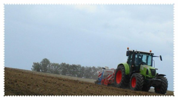 Semis de Maiis le Vendredi 18 Mai 2012 (CLAAS , BREVIGLIERI & MONOSEM) .....