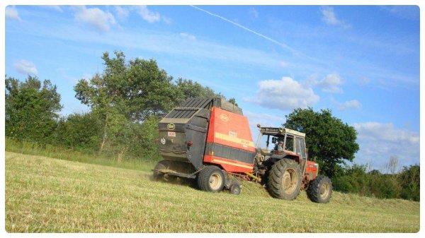 Pressage du Foin le Dimanche 1er Juillet 2012 ( MF & VICON ) ...