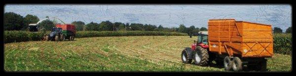 Ensilage de Maïs 2011 ( CLAAS JAGUAR 890 ) .... Vincent