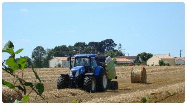 Pressage de paille le Dimanche 22 Juillet 2012 ( NH & CLAAS ) ....