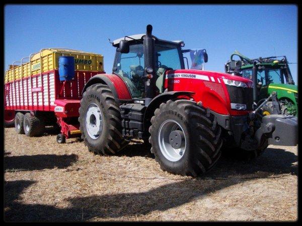 Fête de l'agriculture : Photos