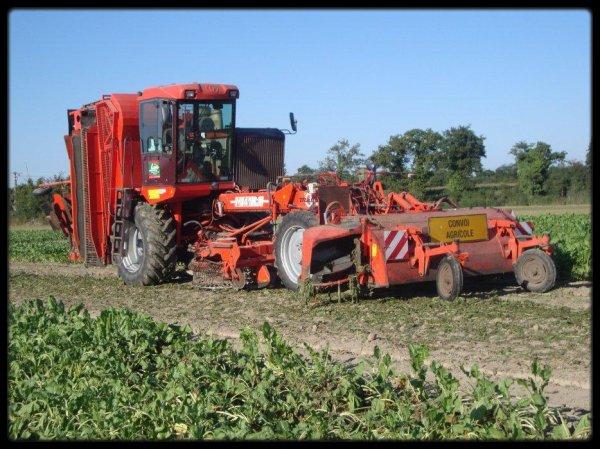Fête de l'agriculture : Photos (n°2)