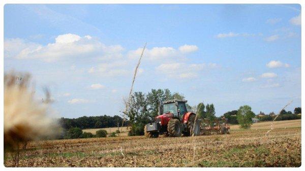 Epandage de Fumier et Labour le Lundi 20 Aout 2012 ....