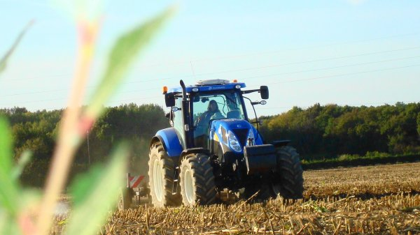 Déchaumage le Dimanche 30 Septembre 2012 ( NH & CARRE ) ...