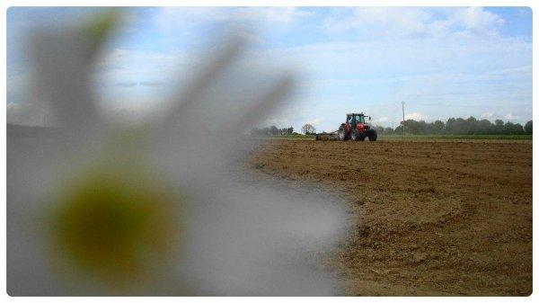 Préparation des terres le Dimanche 5 Mai 2013 ( MF & CARRE ) ...
