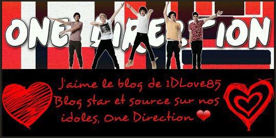 Super Bannière du blog 1DLove85 créé par Joanna(notre me Malik ou Tommo ou encre notre charmante et mignonne  ptit patate .... Haha!!)😜