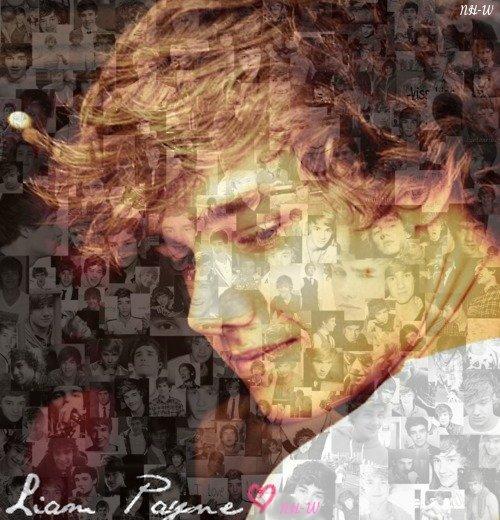 Je trouve que je ne fais pas assez d'articles sur Liam ou avec lui donc...