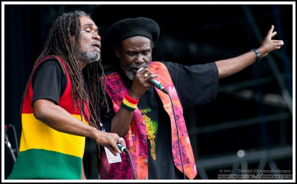 THE WAILING SOULS - LIVE AT THE 6th ONE LOVE ONE HEART FESTIVAL - 29 août 2014