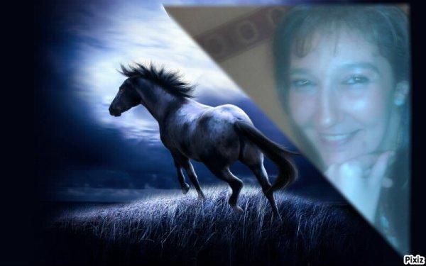 une de mes passions l'équitation !*