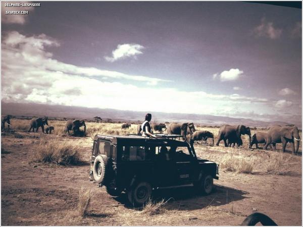 .  31/10  Delphine est au Kenya pour défendre les menaces qui pèsent sur les éléphants d'Amboseli.   .