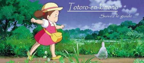 Totoro-en-kimono
