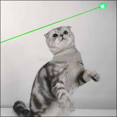 上品なレーザーポインター指示は天文星観測などに必要です