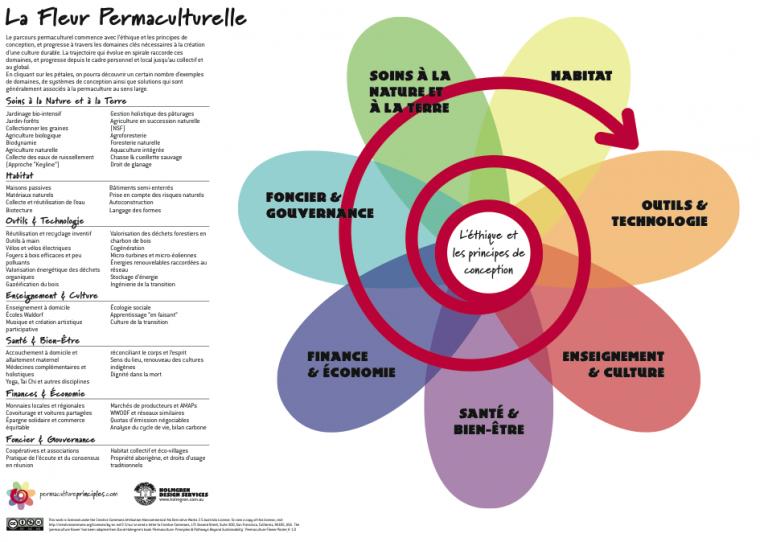 un aperçu de la permaculture