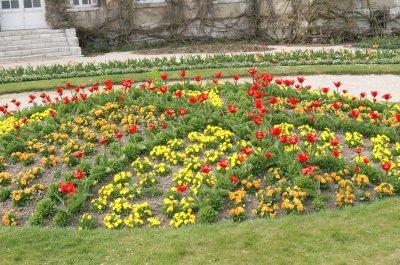 photo que je pris au jardin de plante de rouen