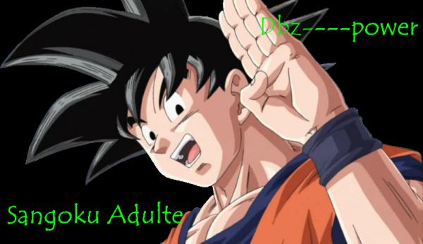 SanGoku adulte