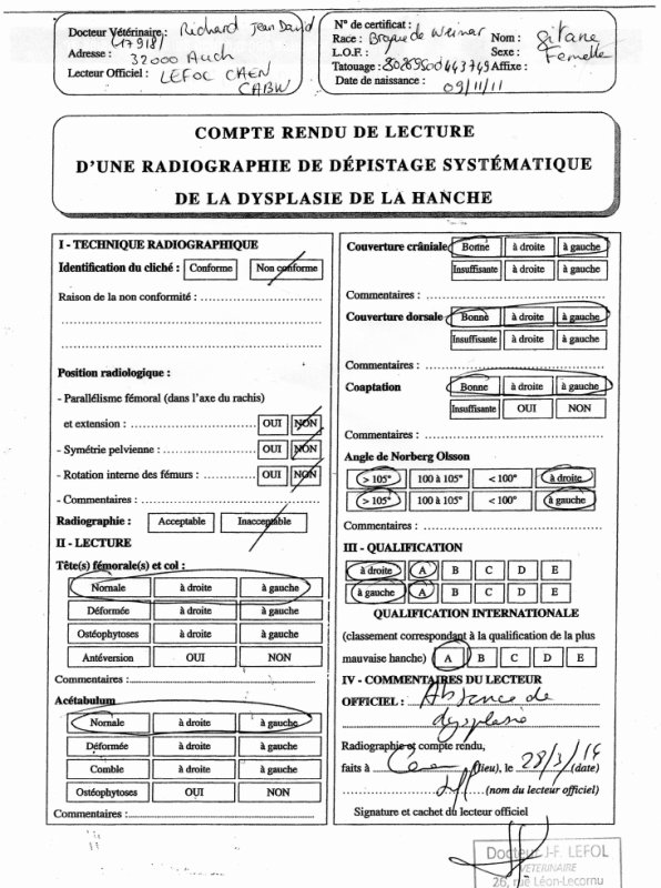 COMPTE RENDU DE LA RADIO OFFICIEL DE DYSPLASIE
