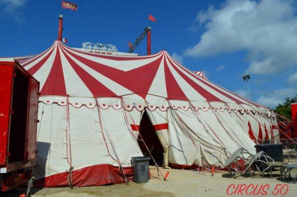 Le cirque AMAR à Cherbourg !