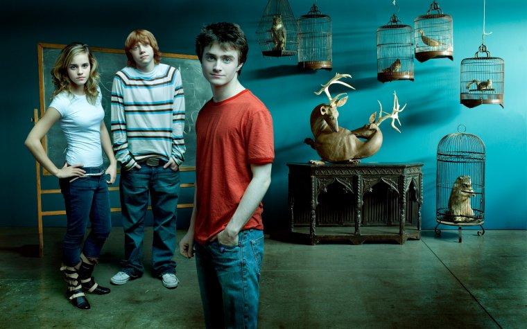 Warner Bros continue de développer l'univers d'Harry Potter !