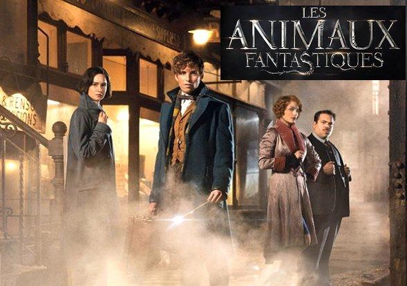 Premières informations sur l'intrigue des Animaux Fantastiques