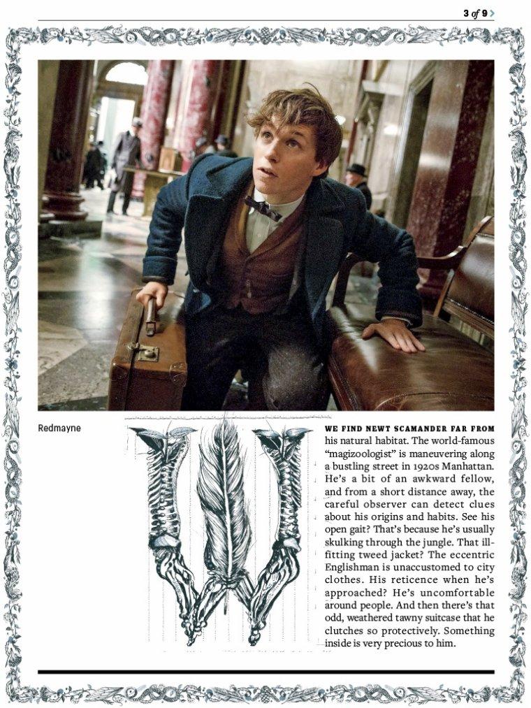 Scans de l'article d'Entertainment Weekly sur Les Animaux Fantastiques