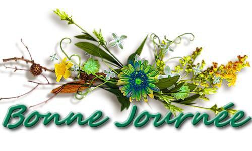 mes amies et amis je vous souhaite une bonne journee