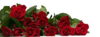 une pensee pour le papa de mon mari qui vient de nous quitté  .. ( si les fleurs poussent au ciel .. seigneur .. cueilles en un bouquet pour moi place les dans les bras de son papa et dit lui que on l'aime et  qu' il me manque lorsqu' il te sourira donne lui un gros bisou et serre le fort dans tes bras ) .. repose en paix ..