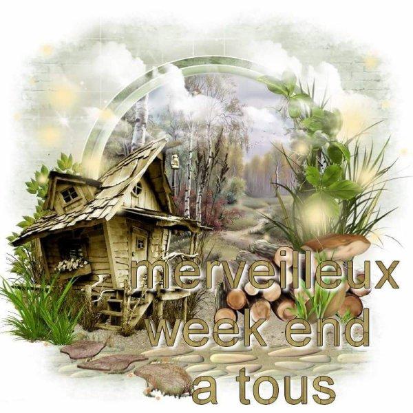 Mes amies et amis je vous souhaite un bon week-end