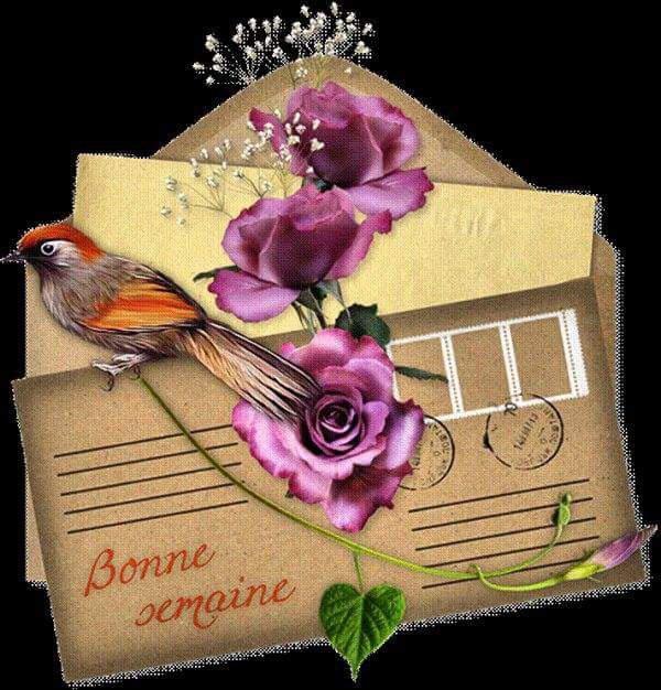 Mes amies et amis je vous souhaite une bonne semaine