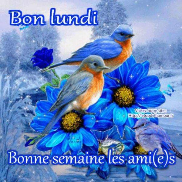 Bonjour mes amies et amis je vous souhaite une bonne semaine