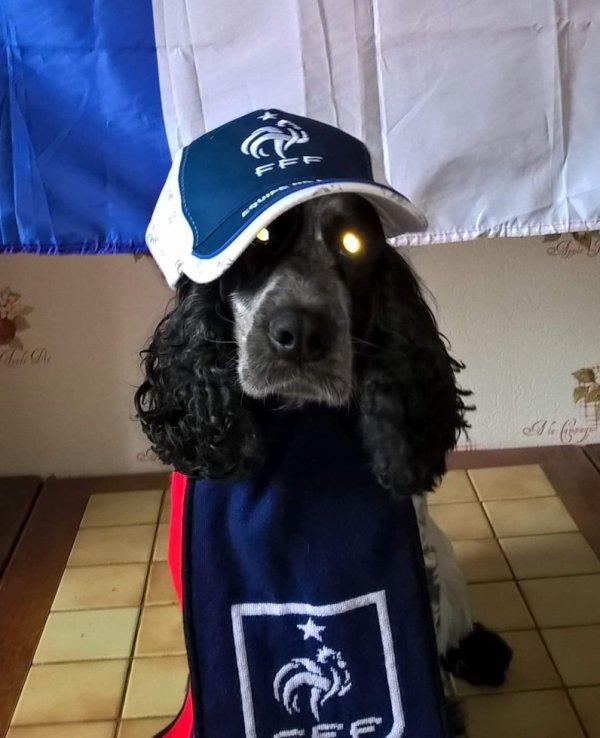 Se soir Uruguay France notre Imbert qui supporte les bleus