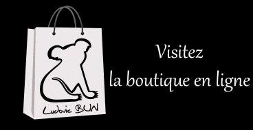 Nouveau site, nouveau look : visitez http://www.ludovicbun.com