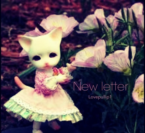 ! NEW LETTER !