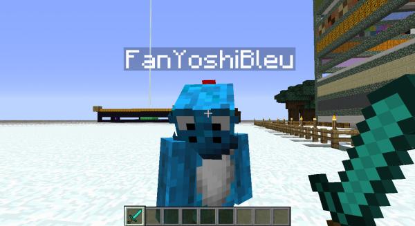 [Une Journée sur]Minecraft