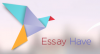 Review of the Features of Essay Have Writing Service
