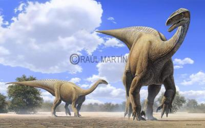 Blog de dino explication page 9 les dinos - Liste dinosaures ...