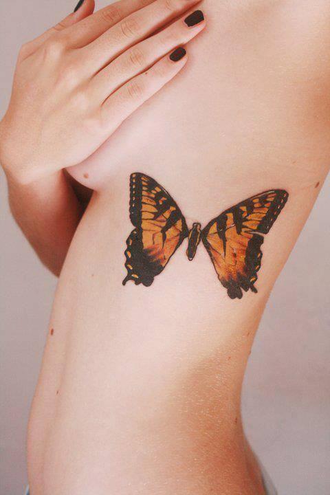 Butterfly.☼