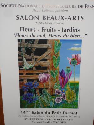 Salon de beaux arts mes cr ations for Salon des beaux arts