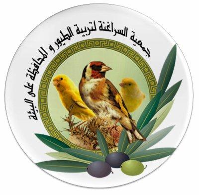 association ornithologique sraghnas