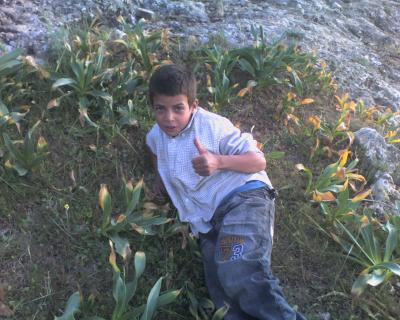 Notre jeune guide à Amezmez
