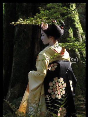 Geisha De Dos les geishas - le japon a une histoire fascinante:il a été isolé